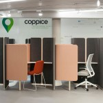 Coppice
