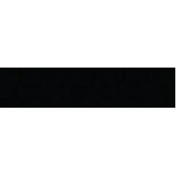 Torasen